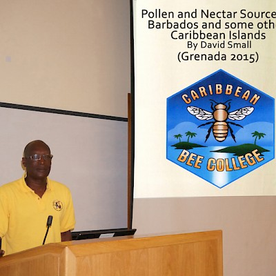 Teaching at Grenada Bee College
